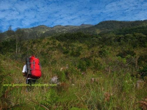 Menuju puncak gunung Arjuno, Jawa Timur. (dok. sulung prasetyo)