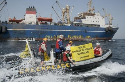greenpeace fight illegal fising in west africa senegal
